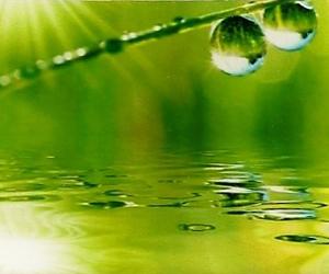 coherence-coaching-eau